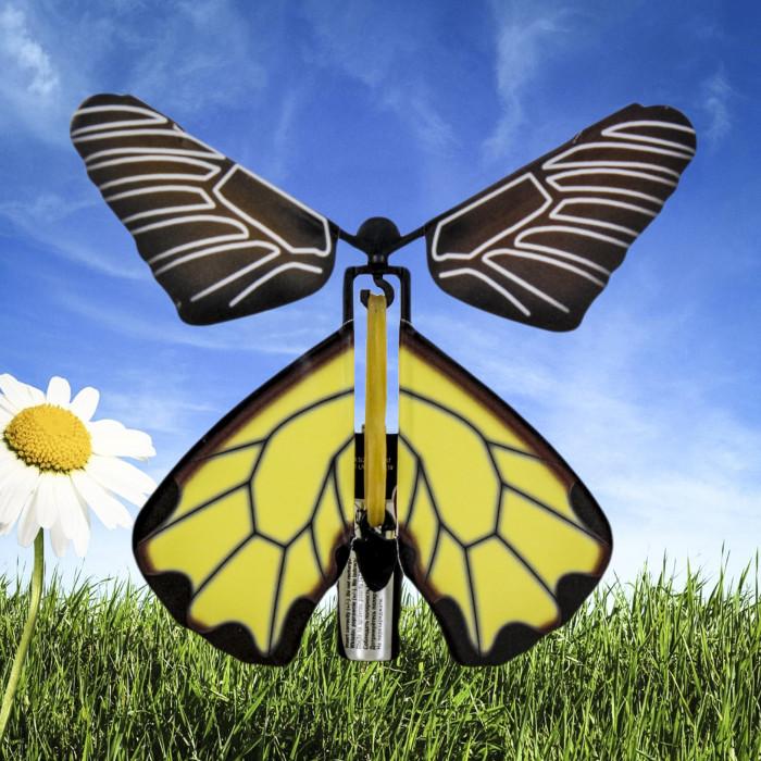 Zaskakujący Motyl