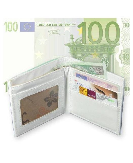 Portfel 100 Euro